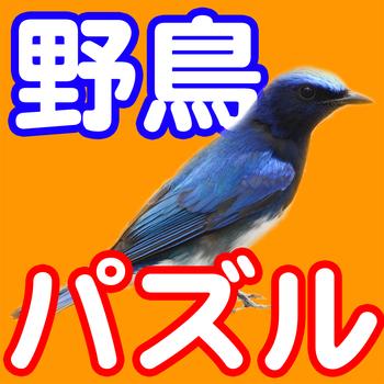 WildBirdPuzzle 遊戲 App LOGO-硬是要APP