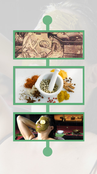 Pocket Ayurveda - Instant Home Remedies Ayurveda Glossary Included