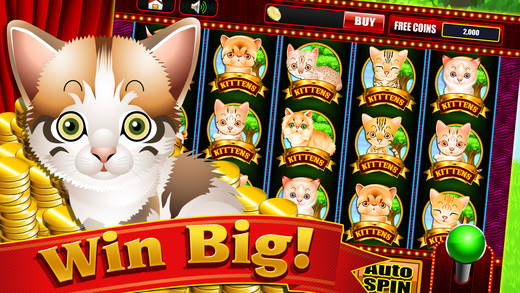 Play the Cute Kitty Cats Game - Win in the Casino Vegas Slots