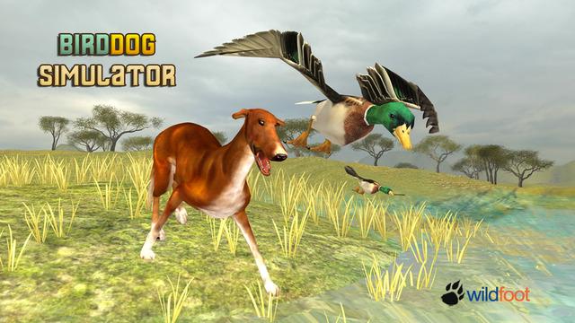 Bird Dog Chase Simulator