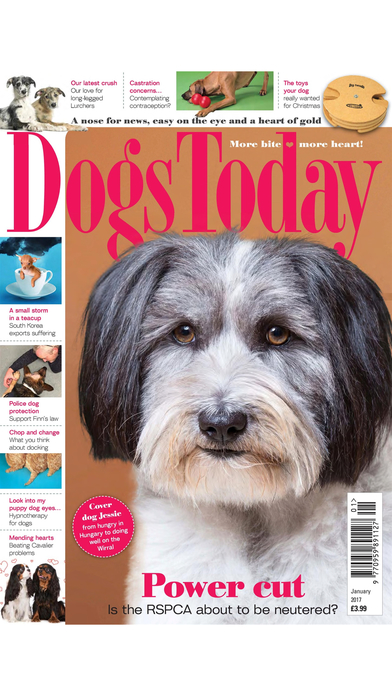 Dogs Today Magazine iPhone Screenshot 4