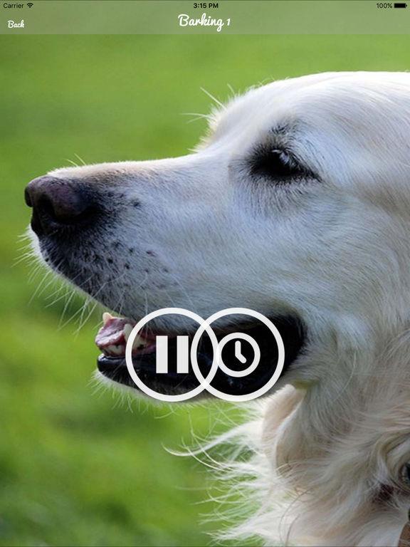 Sounds That Make Dogs Panic