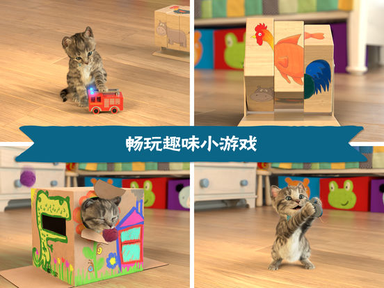 Little Kitten - 我最喜爱的猫猫