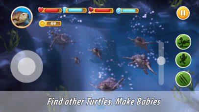 Turtle Family Simulator Full screenshot 2