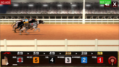 Screenshot 1 Greyhound Racing Game