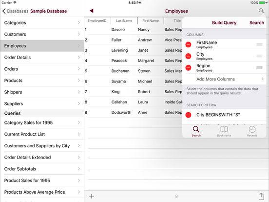 Access Mobile Database Client Screenshots