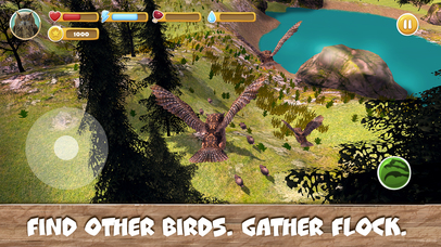 Wild Bird Survival Simulator Full screenshot 2