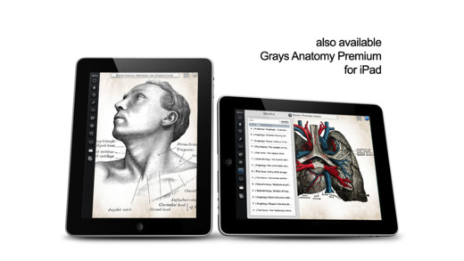 Grays Anatomy Coloring Book : Grays anatomy student edition on the app store