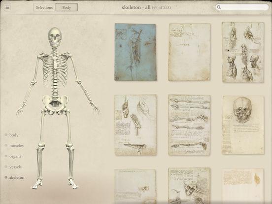 Leonardo da Vinci: Anatomy