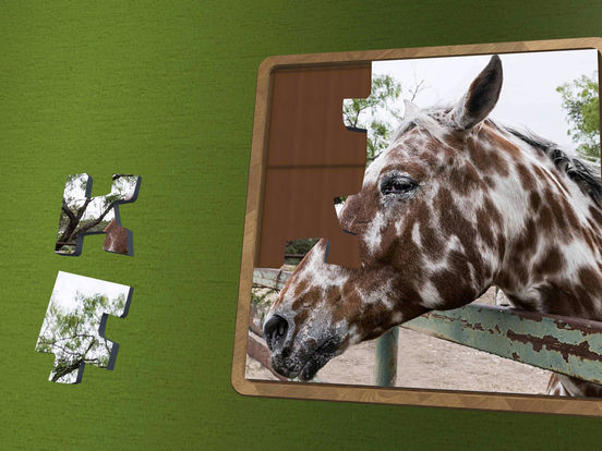 Super Jigsaws Horses screenshot 6
