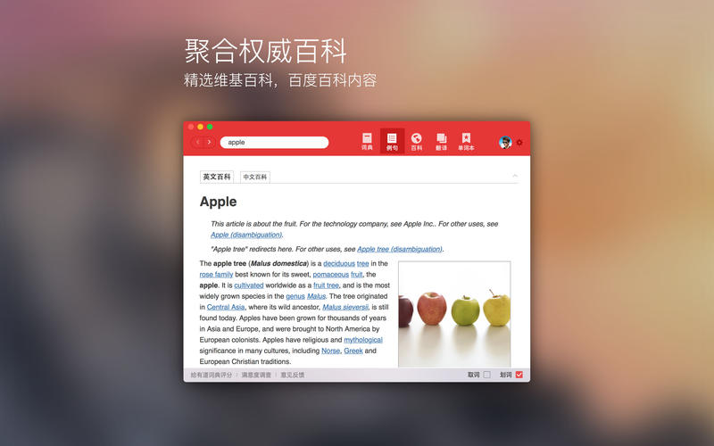 网易有道词典Mac版 for Mac