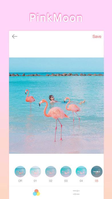 PinkMoon - Flamingo Screenshots