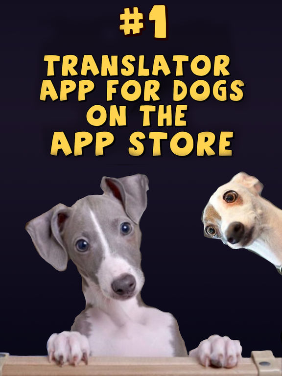 Dog Translator Deluxe - Human to Dog Communicator Screenshots