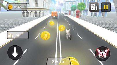 Kitty Cat Rush 3D Game screenshot 1