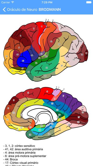Oráculo de Neurocirurgia e Neurologia Screenshots