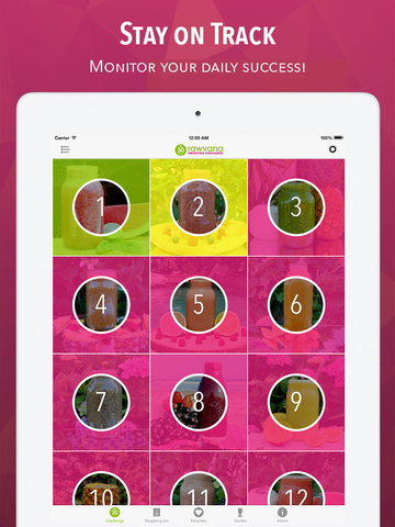 iPad Screenshot 10