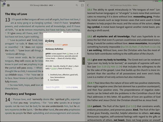 NLT Bible for BibleReader iPad Screenshot 3