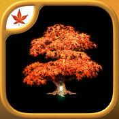 Fire Maple Games - 终极冒险合集
