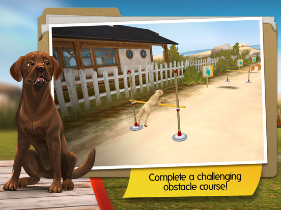DogHotel Premium- My hotel for labradors Screenshots