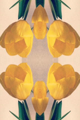 Symmetry - symmetry image maker - ( Enjoy with Camera / Photo Album ) screenshot 2