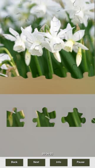 Plants Puzzles