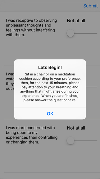 Toronto Mindfulness Scale