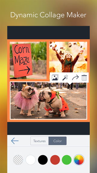 BeFunky Pro -  Photo Editor & Collage Maker Screenshots