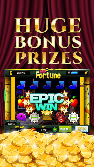 Casino Wild Fortunes FREE Slots Game