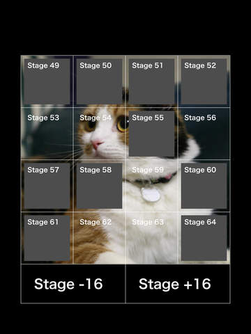 Laser Cat's Jump Action HD