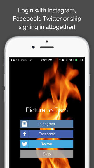 Picture To Burn