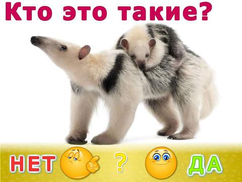 Животные для детей! Развивающие игры для малышей. Детская игра развивалка: детский сад (малыш, ребенок, мальчик, девочка 2, 3, 4 года)