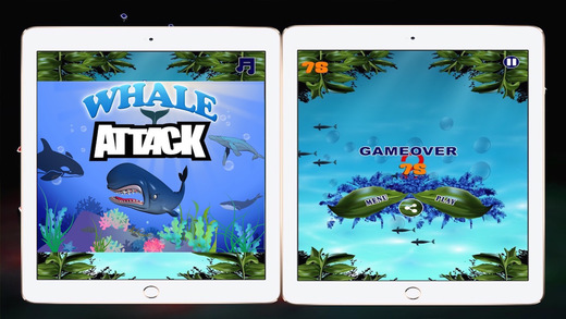 Whale Attack HD