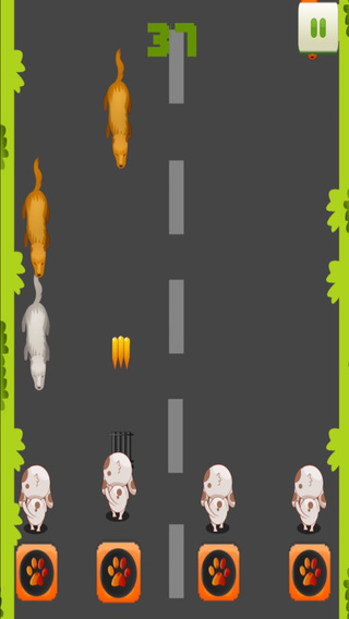 Tap the Playful Pet - A Puppy Shootout Game FREE