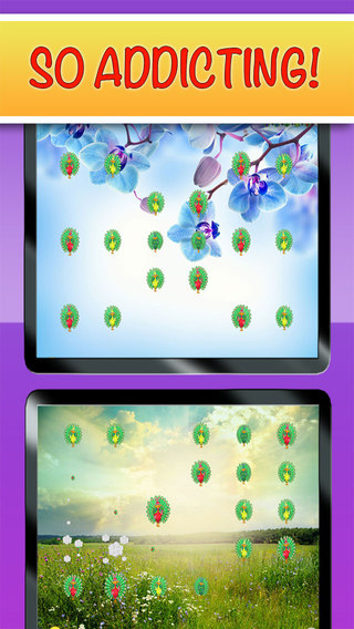 Peacock Pop - Free Fun Cute Puzzle Game