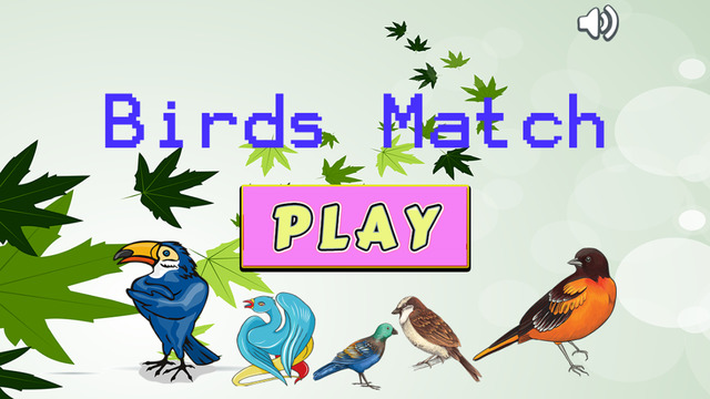 Improve Your Kids Brain With Matches Bird Cards