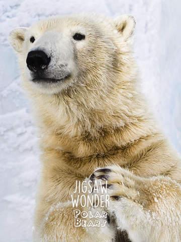 Jigsaw Wonder Polar Bears for Kids screenshot 8