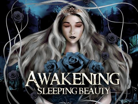 Awakening Sleeping Beauty - hidden objects