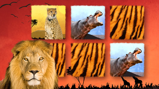 Play with Wildlife Safari Animals - Memo Game photo for preschoolers