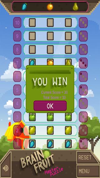 Brain Fruit Master Puzzle