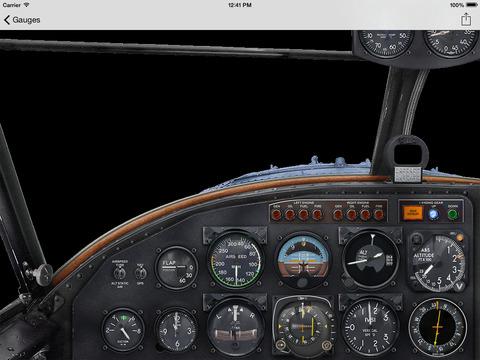 FSX Grumman Goose G21A