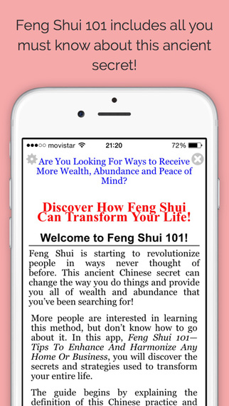 Feng Shui 101 - Pro Edition