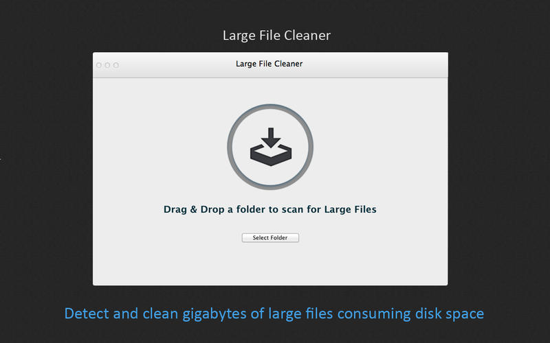Large File Cleaner Screenshot - 1