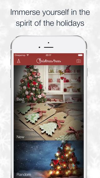 Christmas trees - new year photos