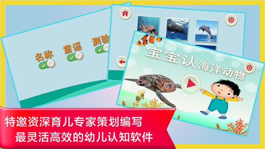 Study Chinese Words and Sentences From Scratch - Sea Animals