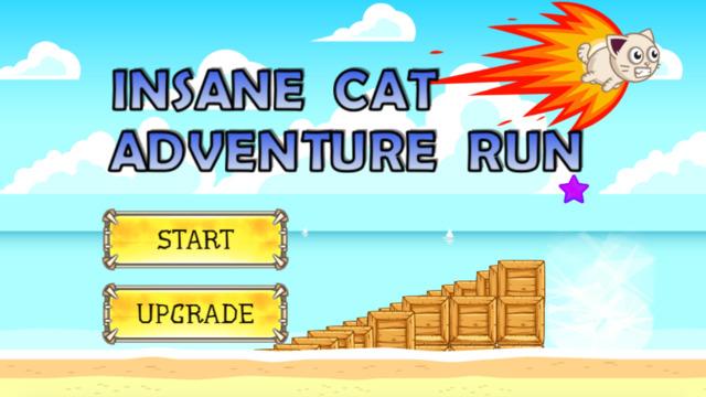 Insane Cat Adventure Run