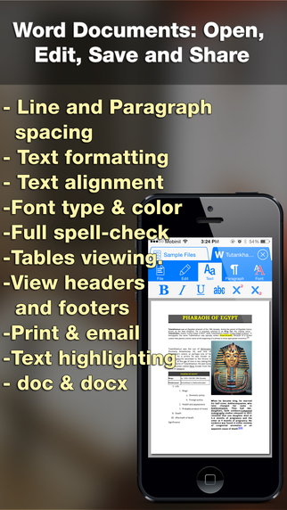 iDocs for Office Word Documents PDF Annotation Forms