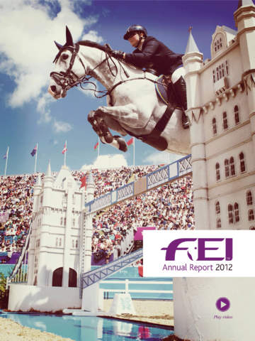 FEI Annual Report