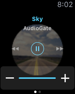 iAudioGate - High Resolution Music Player Screenshots