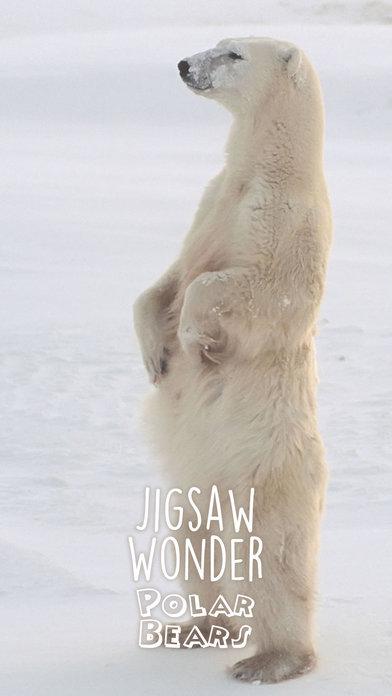 Jigsaw Wonder Polar Bears for Kids screenshot 5
