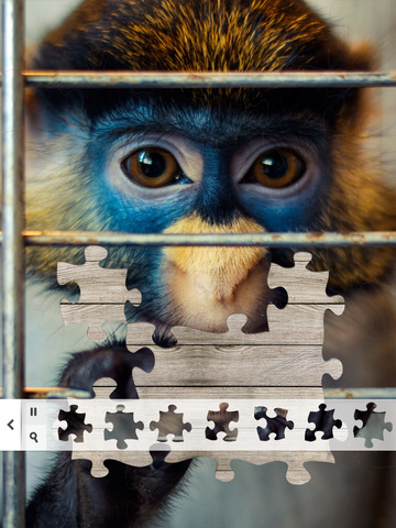 Puzzle of the Day for iPad